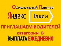 Водитель такси / водитель B / Выплата ежедневно — Вакансии в Санкт-Петербурге