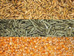 Корма, зерно, сено, опилки