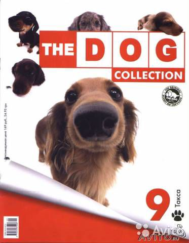 The Dog collection. N9 серии
