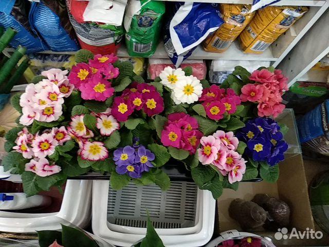 Цветы, купить цветы в городе гулькевичи