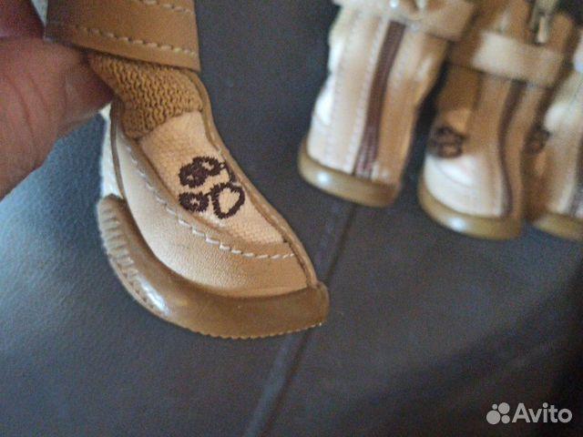 Обувь для собак 89062577662 купить 3