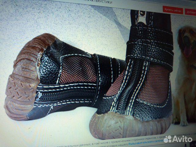 Ботинки для лабрадора 89515899554 купить 8