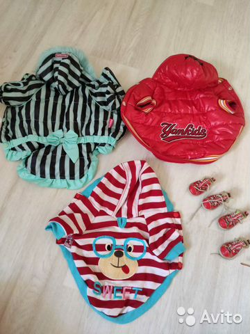 Одежда для маленьких собак  89145575993 купить 2