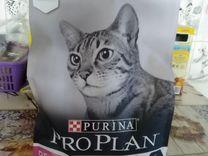 Корм Пурина про план для кошек