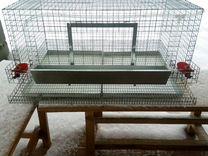 Клетка для кур несушек